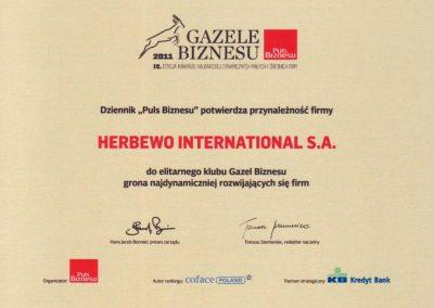 Gazele Biznesu 2011