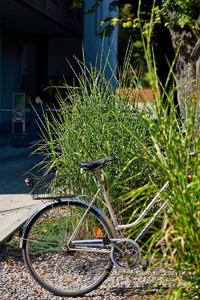 Parking dla rowerów w Regent Office